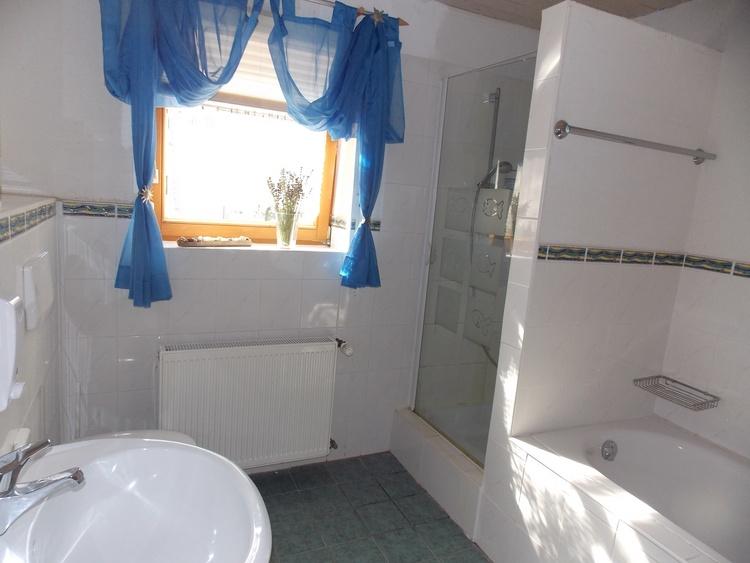 Badezimmer mit WC/Badewanne und Dusche