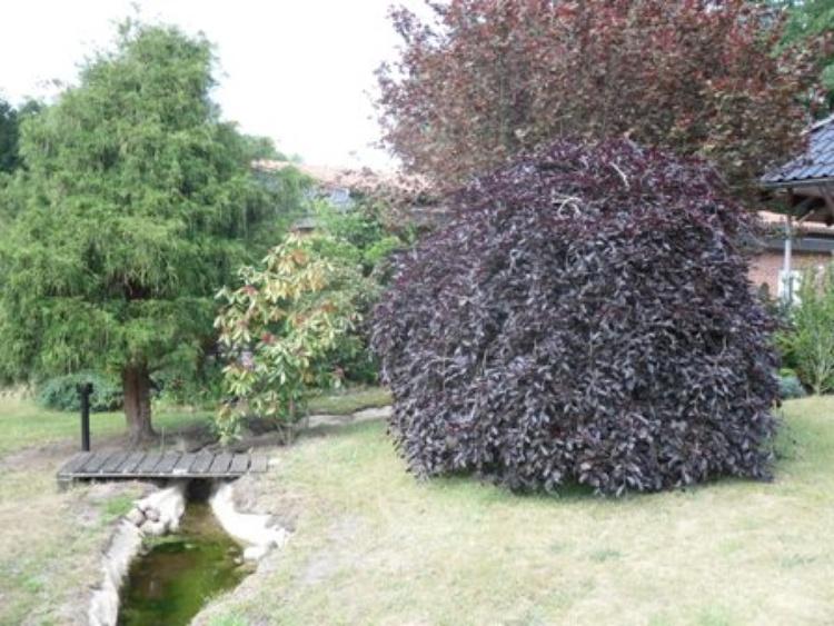 Blick durch den Garten mit Bachlauf