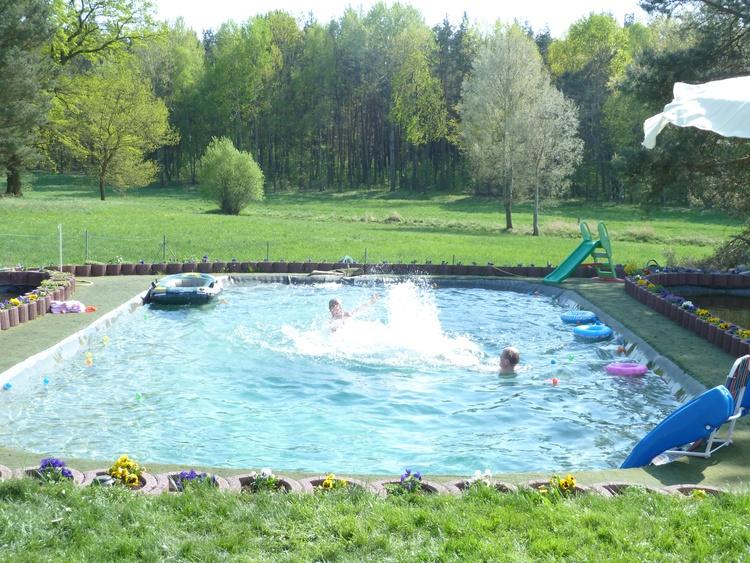 unser Schwimmteich (Pool) 11,5 x 7 mtr. und zwischen 0,8 und 1,3 mtr. tief