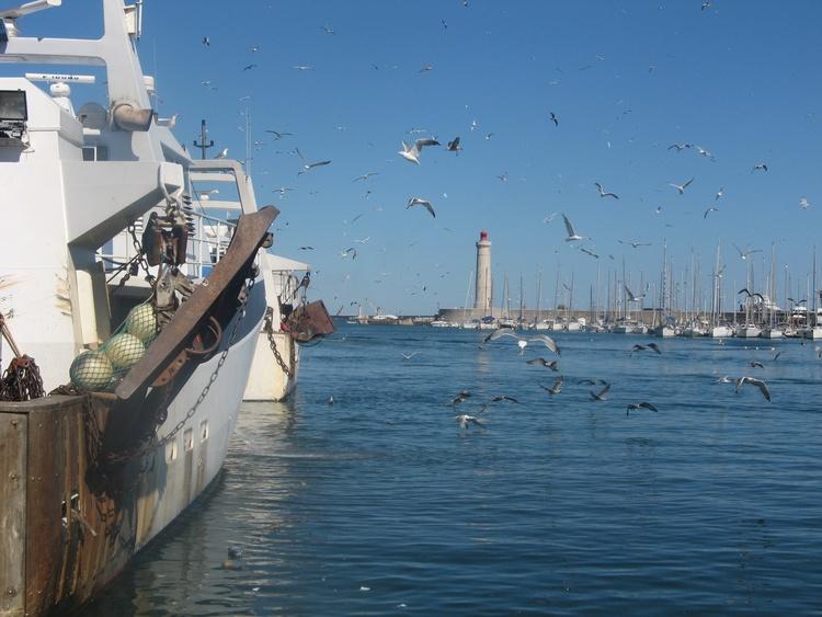 Hafen mit Fischerboot