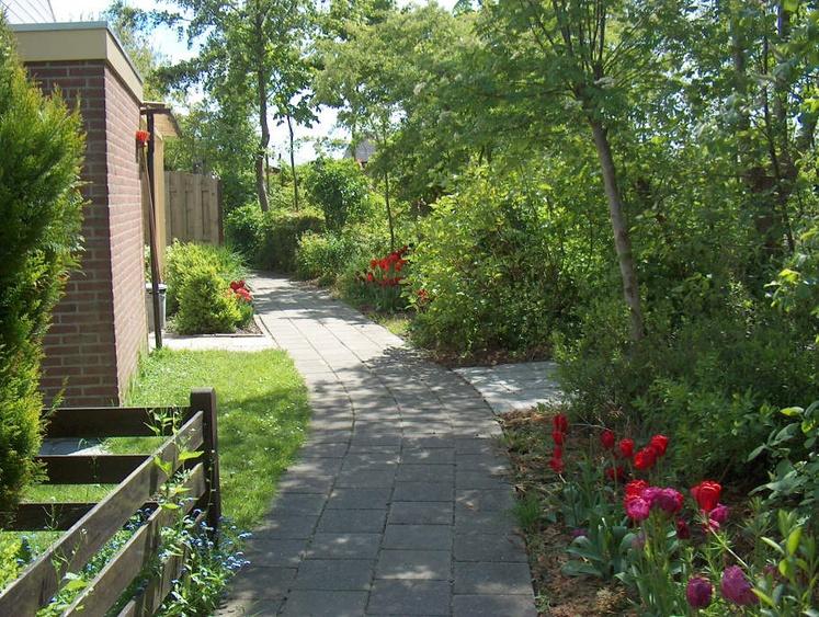 Die Häuser sind harmonisch eingebettet in der schön gestalteten Anlage. Kleine Spazierwege verbinden