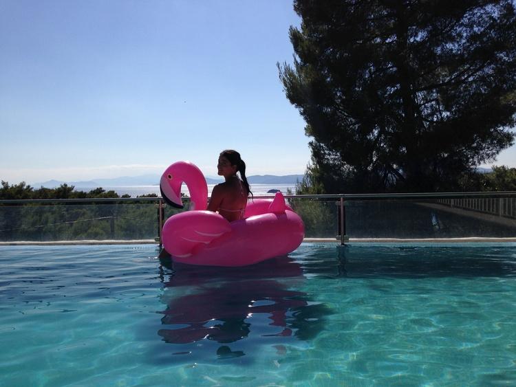 Flamingo Spaß