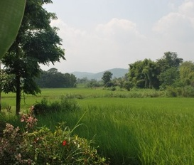 Farm Chaehom-Ban sa