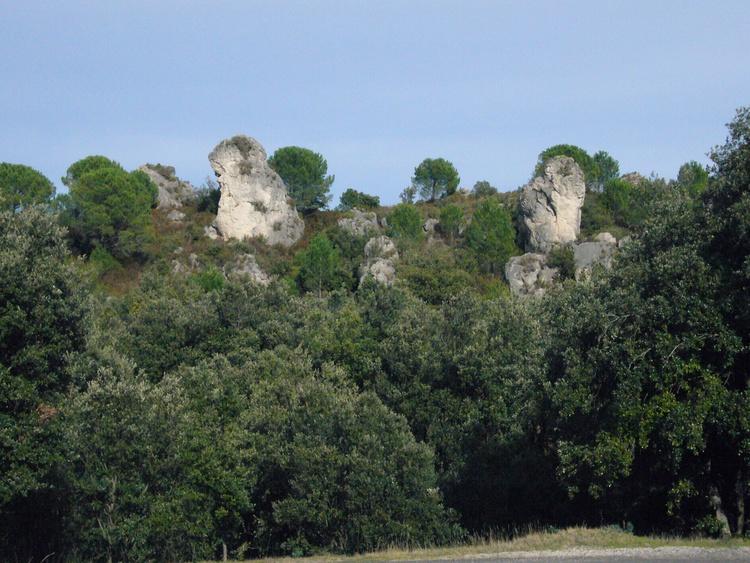 Landschaft bei Salasc