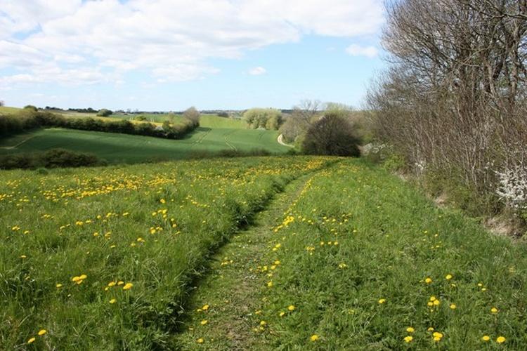 Wanderwege auf unserem Grundstück