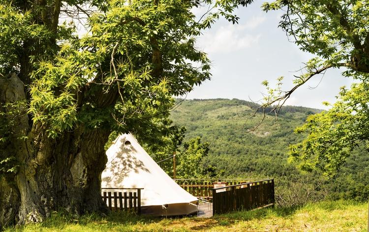 Glamping tent Chestnut