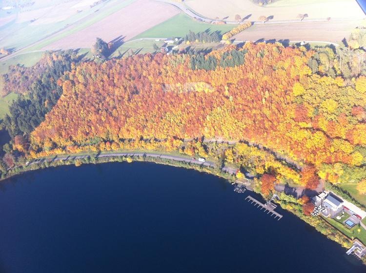 Herbstwald um das Pulvermaar