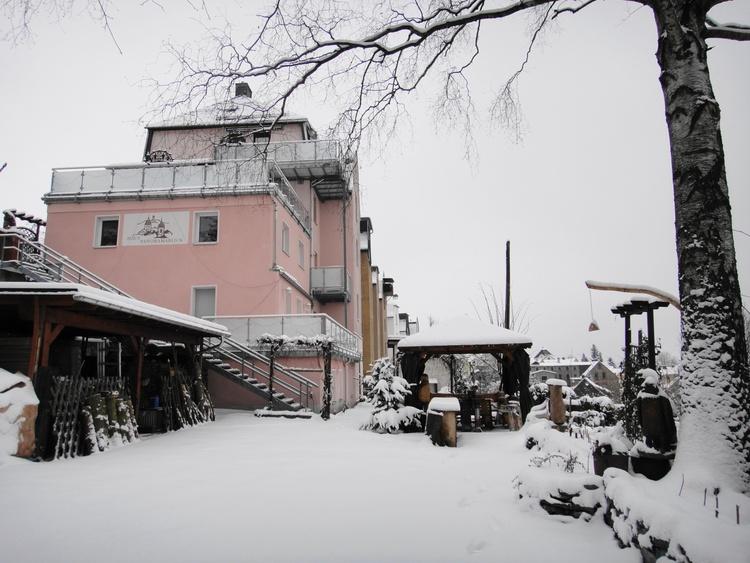 Haus Panoramablick-Winter