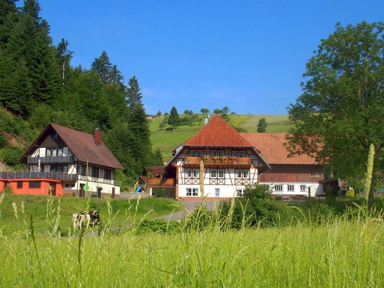 Hochenhof mit Ferienhaus