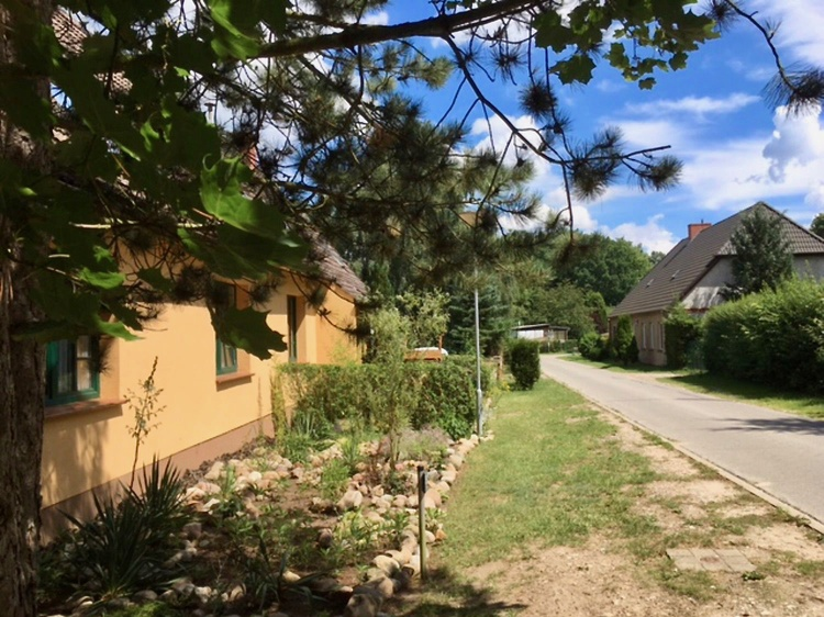 Your accommodation (left side of the street) - Welcome to Schönlage