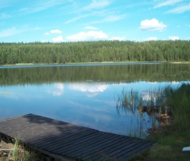 Ferienhaus Dammsjön Västansjö