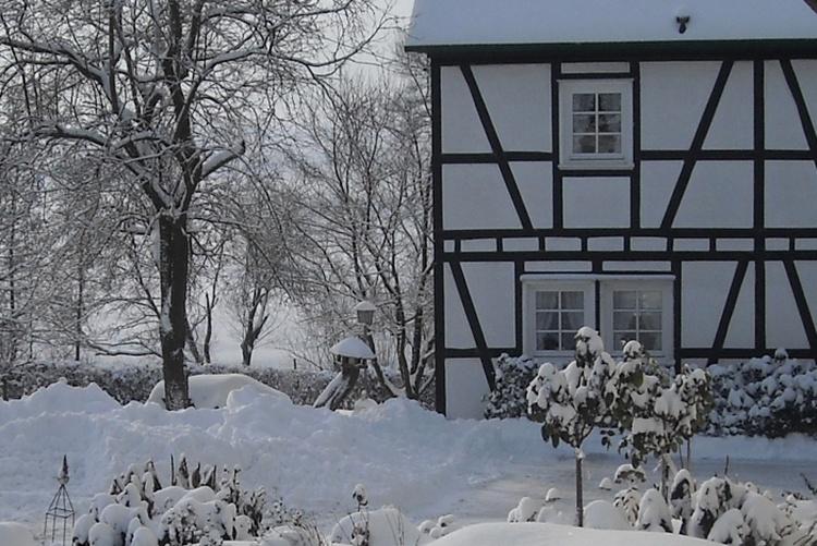 Schneefantasie
