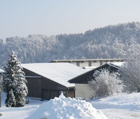 Holiday Home Willingen