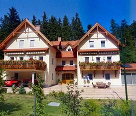 Holiday Apartment Puchberg am Schneeberg