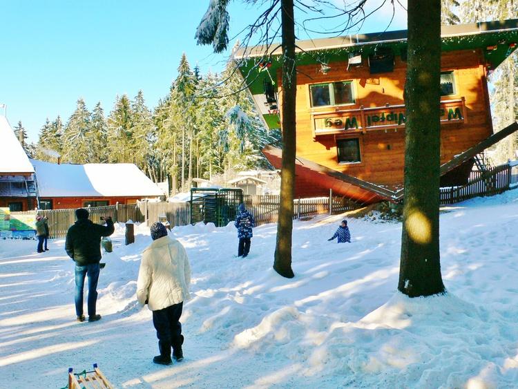 Wipfelweg Maibrunn