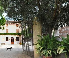 Bauernhof Volta Mantovana