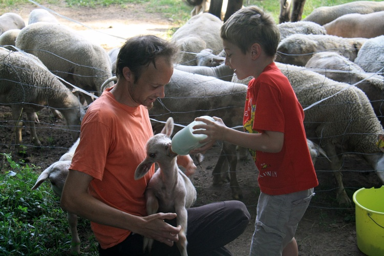 You can join us when feeding the animals