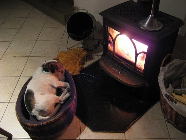 Herrlich schlafen beim Feuer