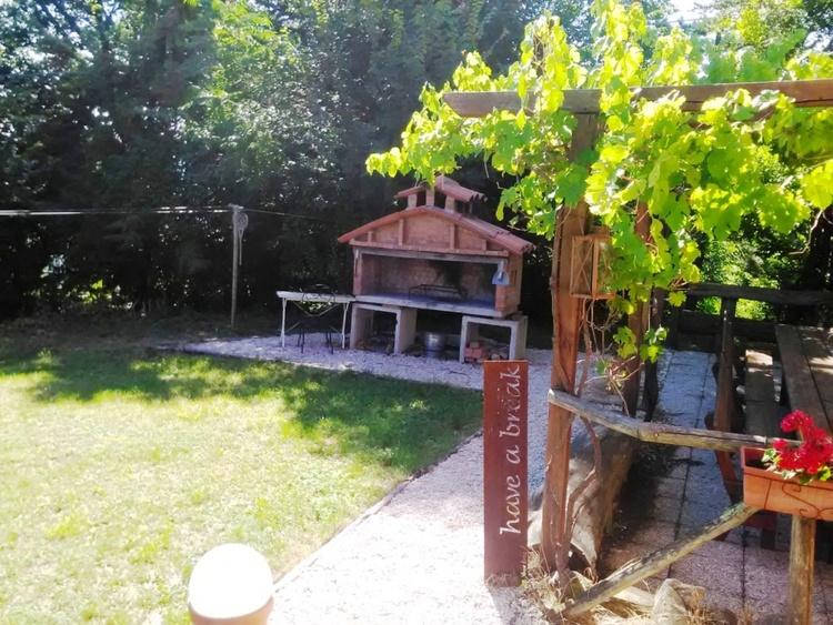 The Italian stone barbecue with vine arbor