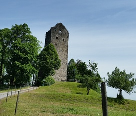 Ferienwohnung Wangen / Neuravensburg