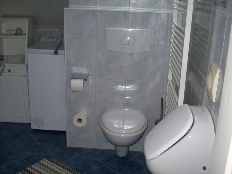 Wohnung II, Dusche - WC - Urinal, Waschmaschine