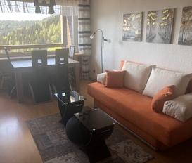 Holiday Apartment Simonhöhe 3