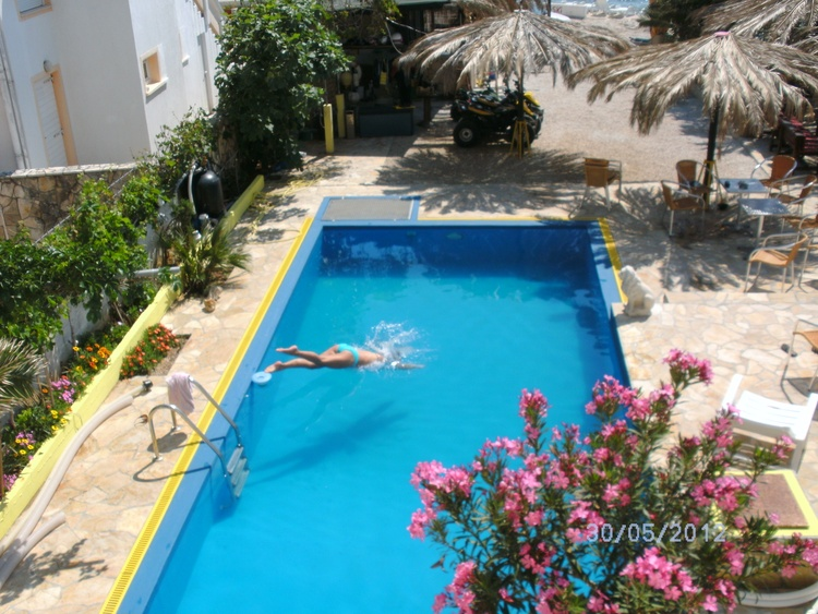Garden, Pool, Relax
