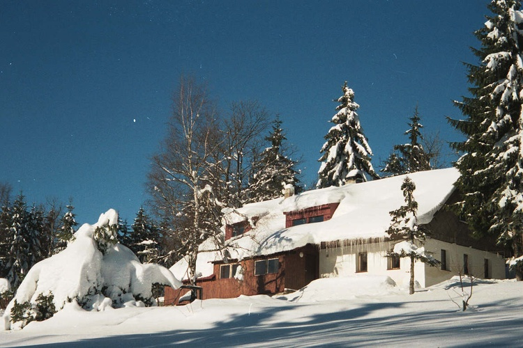 Winter view with garden