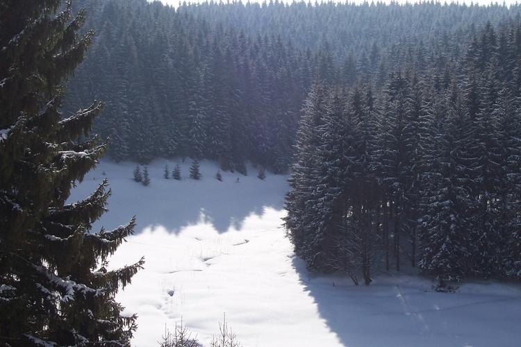 Winter im Taubachtal