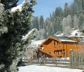 Ferienhaus Bramberg am Wildkogel