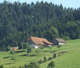 Ferienwohnung Oberharmersbach