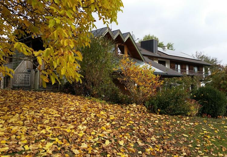 ... und im Herbst