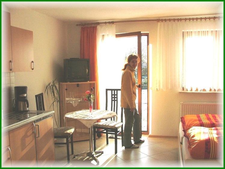 Essbereich Appartement
