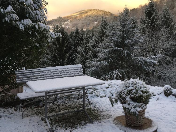 Winterstimmung im Garten