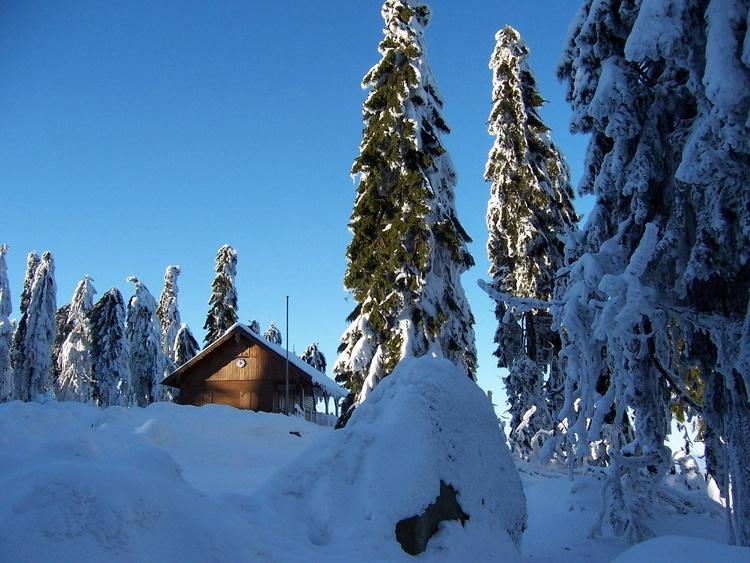 Top of the Schneeberg Mountain
