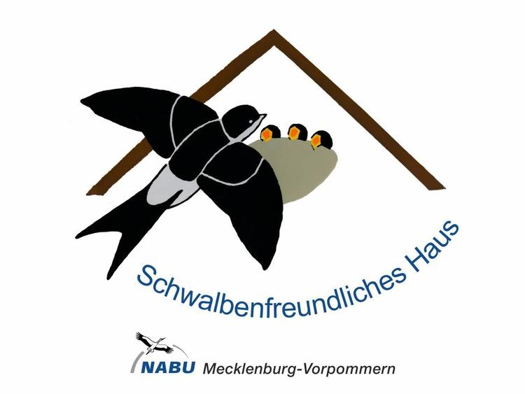 Unser swalfenhus beherbert im Sommer viele Schwalbenfamilien.