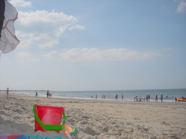 Large sandy beaches nearby