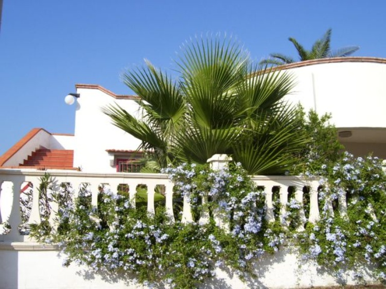 Außenansicht der Villa Stella
