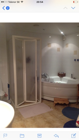 Big bathroom with sauna, tub, shower and toilet